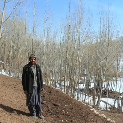 Afghanaid terraces hillsides to reduce the dangers of snow-melt