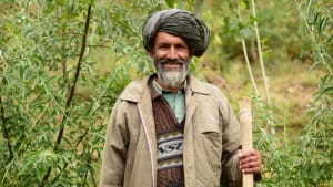 Reforestation in Afghanistan