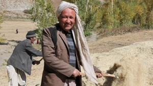 Four ways growing fodder is helping families to flourish in Afghanistan